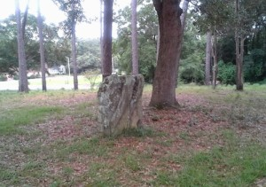 Fairhope also has rocks- not coquina rocks either, but actual rocks.